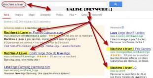 """Extrait des mots clés """"balisés"""" dans google"""