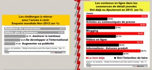intentions-ecommerce-monde-2013