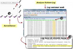 analyse logs serveur
