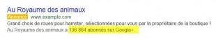 Relais de Google+ dans Liens sponsorisés