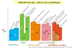 Perception des performances du digital
