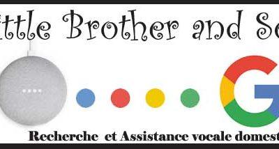 Recherche et Assistance Vocale Domestique avec Google