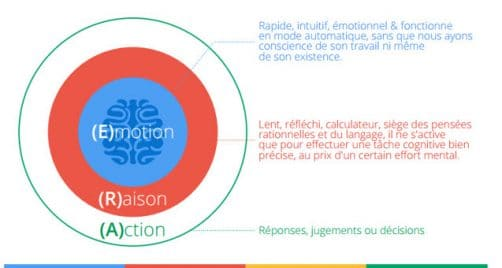 Emotion Raison Action