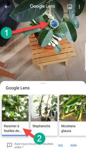 Google lens sur android