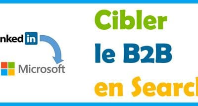 Ciblage LinkedIn dans Bing ads (ex microsoft advertising)