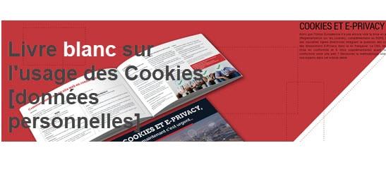 Un livre blanc sur les Cookies et les données personnelles