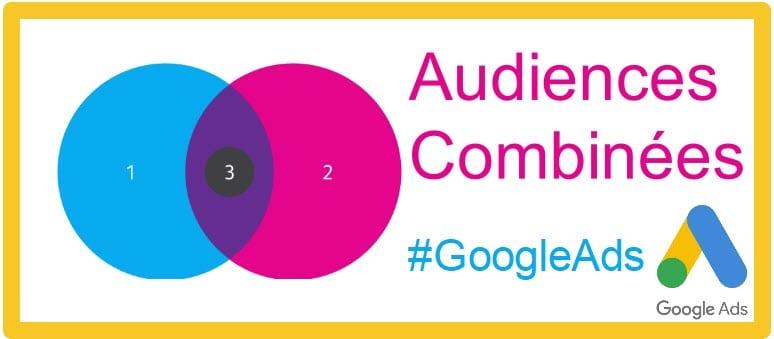 Audiences Combinées Sur la Recherche dans Google Ads