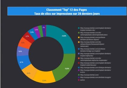classement top 12 pags search console