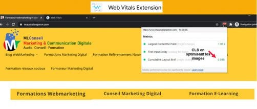 WEB VITALS CHROME EXTENSION