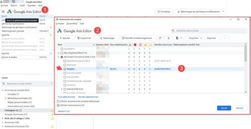 Connecter google ads et editor