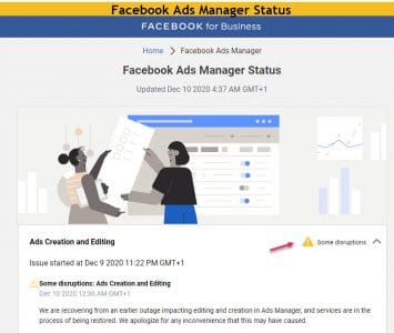 Facebook ads manager status